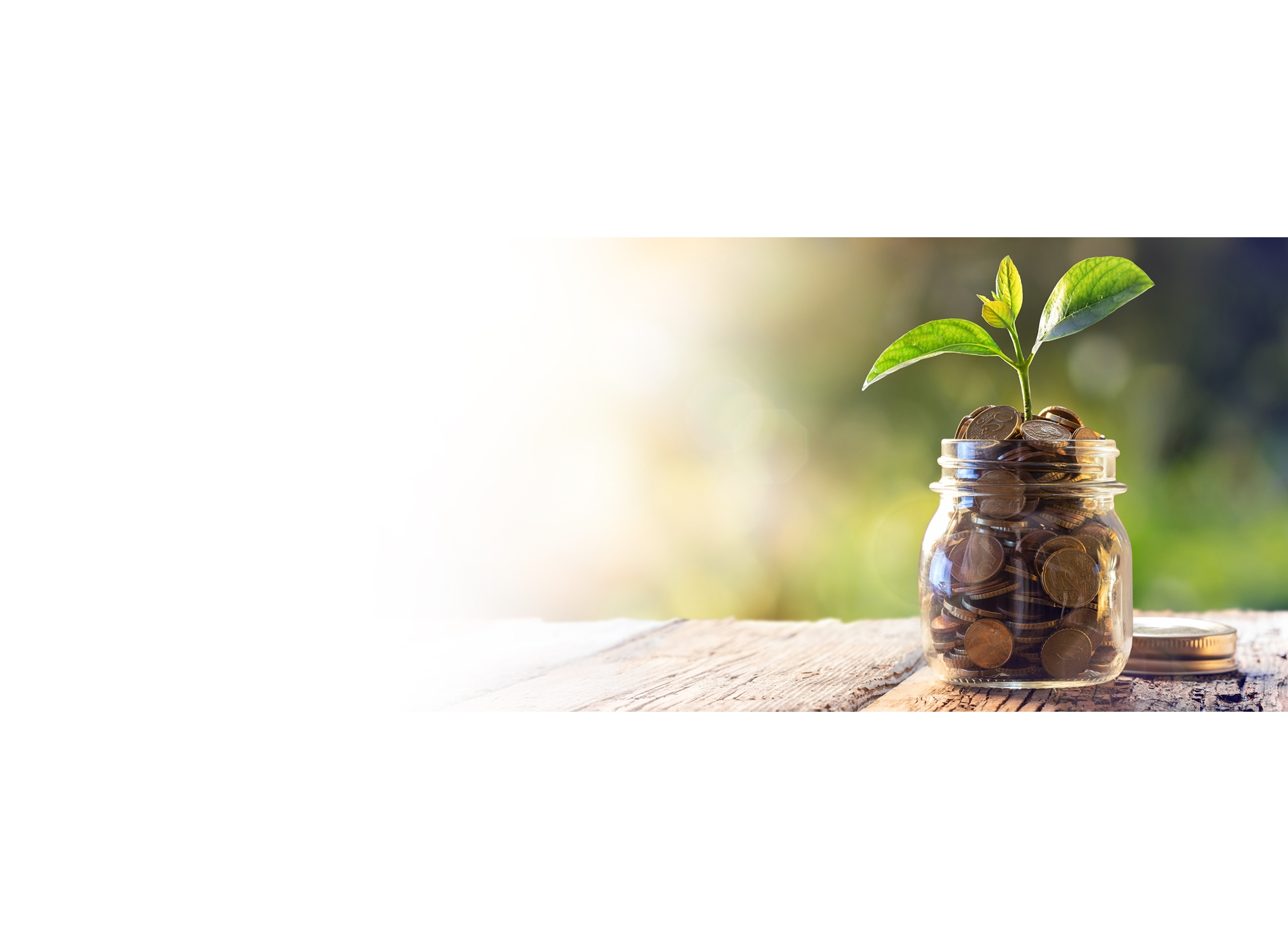Investment jar savings growth